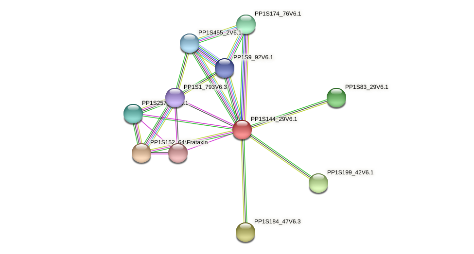 PP1S144_29V6.1 protein (Physcomitrella patens) - STRING interaction network