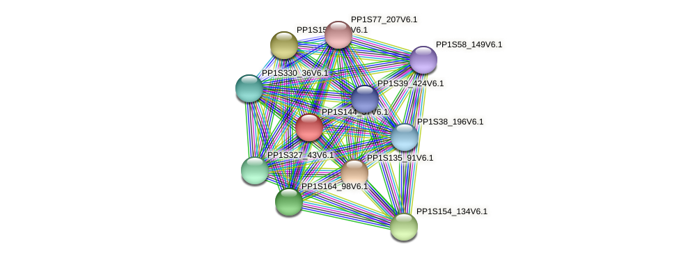 PP1S144_37V6.1 protein (Physcomitrella patens) - STRING interaction network