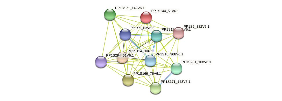PP1S144_51V6.1 protein (Physcomitrella patens) - STRING interaction network