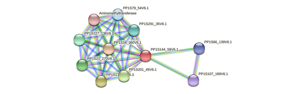 PP1S144_58V6.1 protein (Physcomitrella patens) - STRING interaction network
