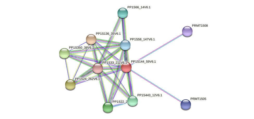 PP1S144_59V6.1 protein (Physcomitrella patens) - STRING interaction network