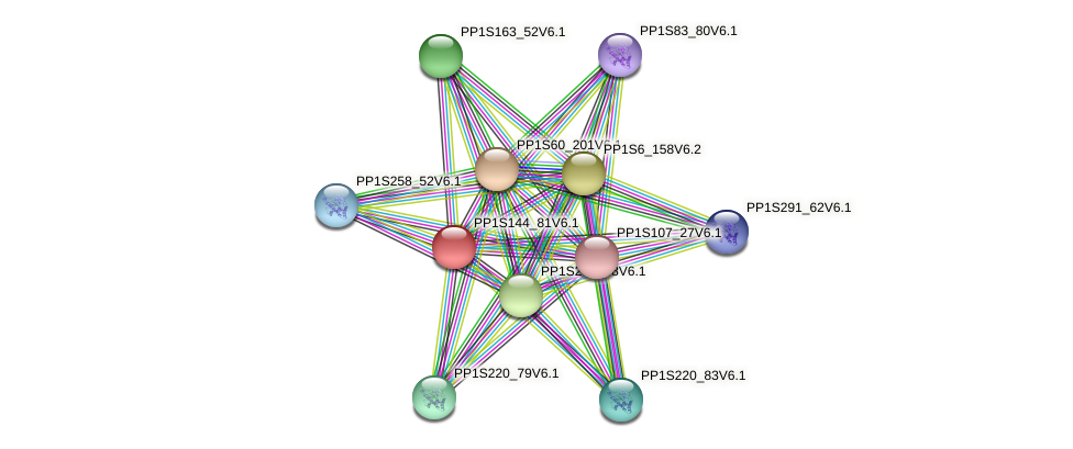 PP1S144_81V6.1 protein (Physcomitrella patens) - STRING interaction network