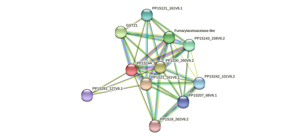 PP1S144_86V6.1 protein (Physcomitrella patens) - STRING interaction network