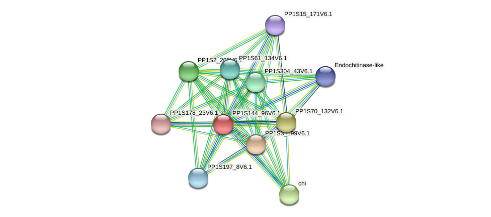 PP1S144_96V6.1 protein (Physcomitrella patens) - STRING interaction network