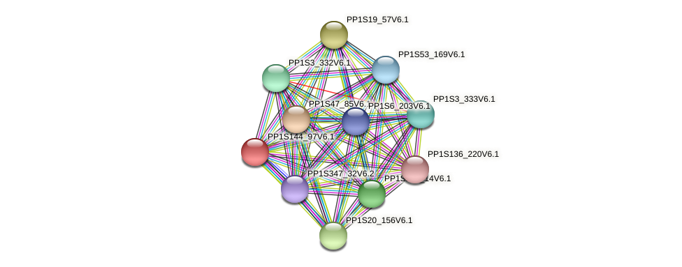 PP1S144_97V6.1 protein (Physcomitrella patens) - STRING interaction network