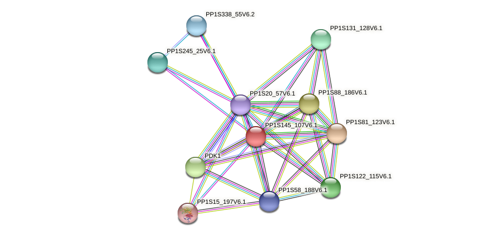 PP1S145_107V6.1 protein (Physcomitrella patens) - STRING interaction network