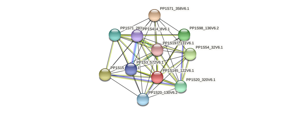 PP1S145_122V6.1 protein (Physcomitrella patens) - STRING interaction network