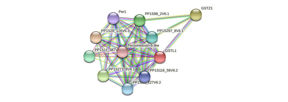 PP1S145_161V6.1 protein (Physcomitrella patens) - STRING interaction network