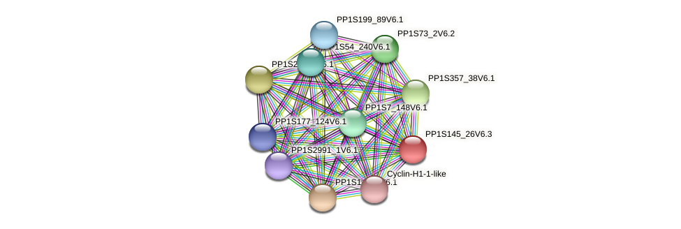 PP1S145_26V6.1 protein (Physcomitrella patens) - STRING interaction network