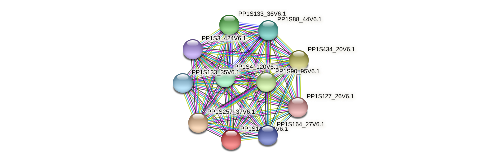 PP1S145_94V6.1 protein (Physcomitrella patens) - STRING interaction network