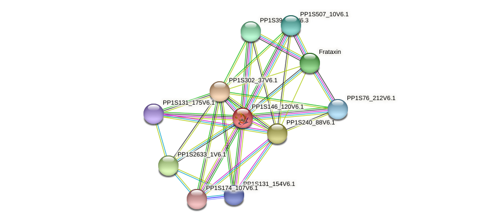 PETF protein (Physcomitrella patens) - STRING interaction network