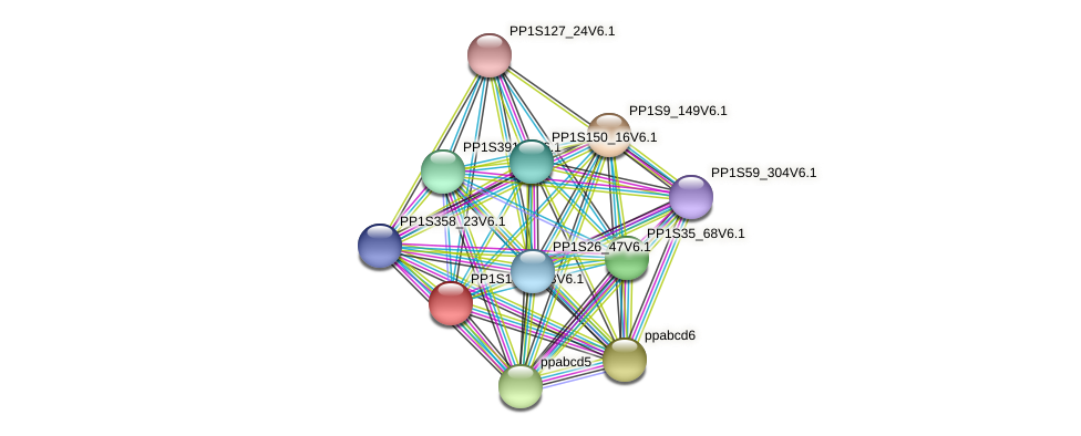 PP1S146_123V6.1 protein (Physcomitrella patens) - STRING interaction network
