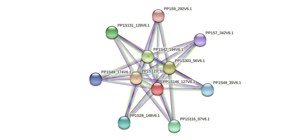 PP1S146_127V6.1 protein (Physcomitrella patens) - STRING interaction network