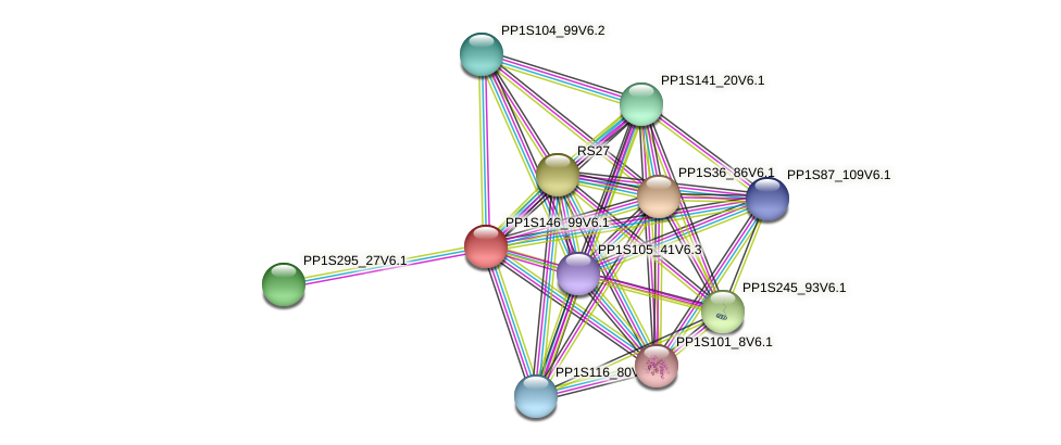 PP1S146_99V6.1 protein (Physcomitrella patens) - STRING interaction network