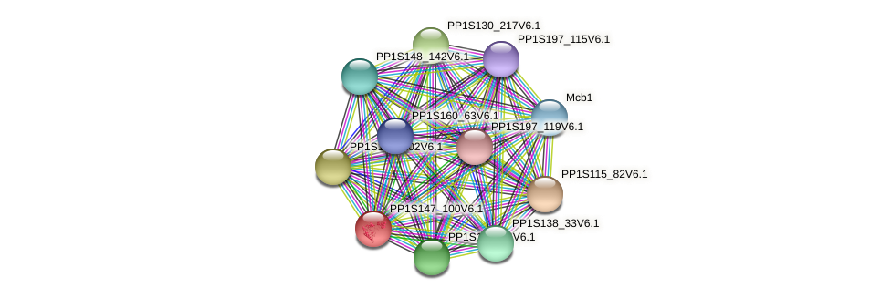 PP1S147_100V6.1 protein (Physcomitrella patens) - STRING interaction network