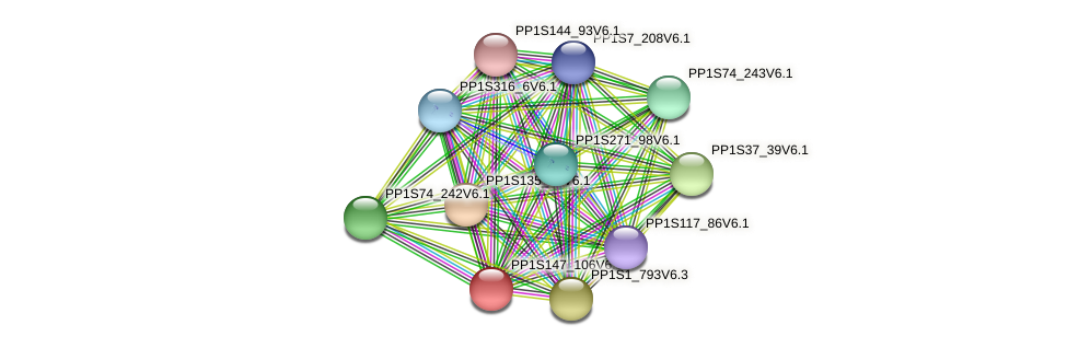 PP1S147_106V6.1 protein (Physcomitrella patens) - STRING interaction network