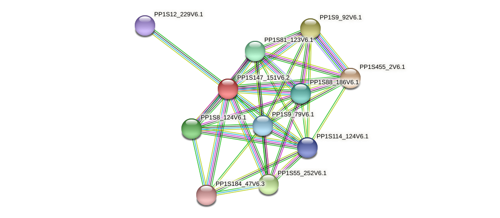 PP1S147_151V6.2 protein (Physcomitrella patens) - STRING interaction network