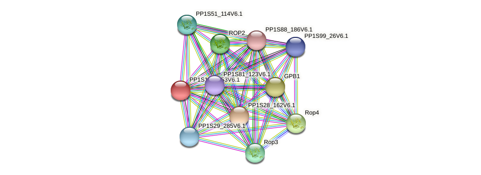 PP1S147_153V6.1 protein (Physcomitrella patens) - STRING interaction network
