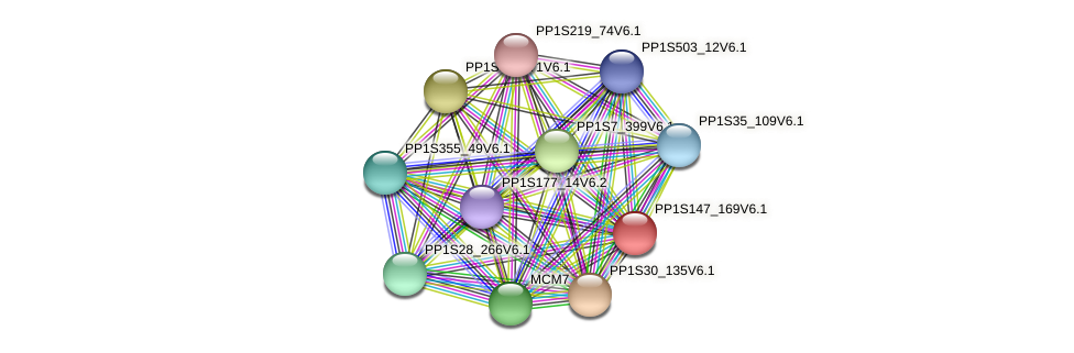 PP1S147_169V6.1 protein (Physcomitrella patens) - STRING interaction network