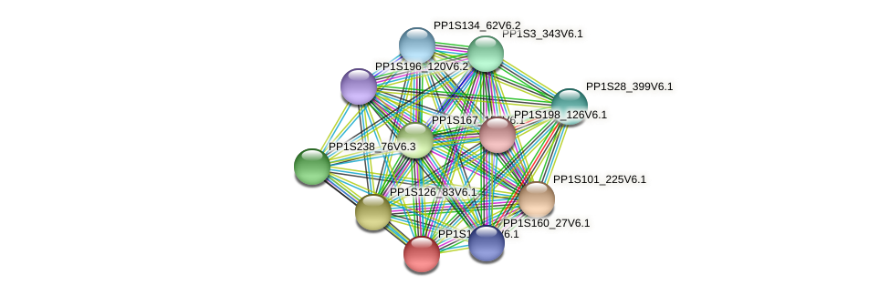 PP1S147_6V6.1 protein (Physcomitrella patens) - STRING interaction network