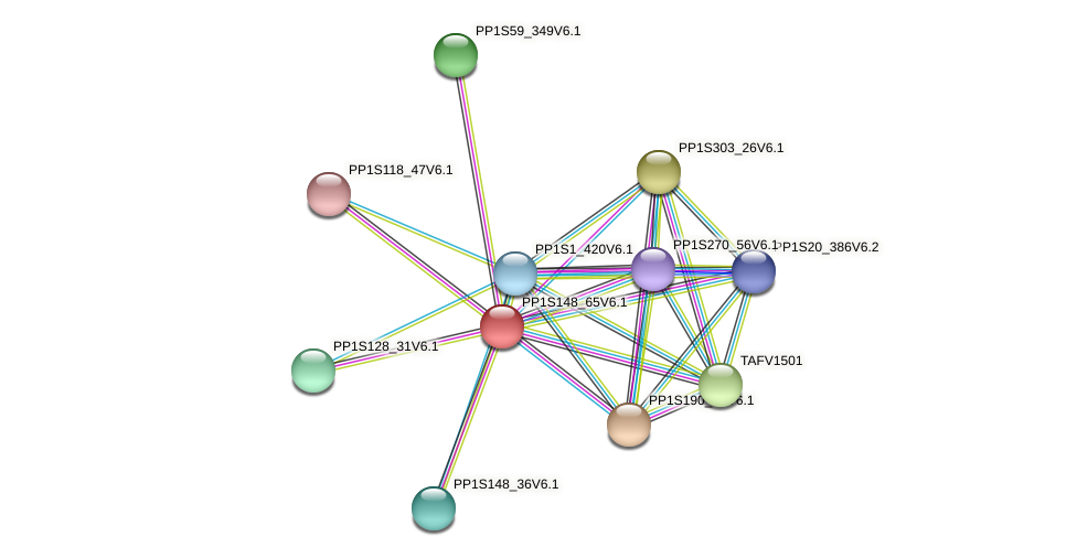 PP1S148_65V6.1 protein (Physcomitrella patens) - STRING interaction network