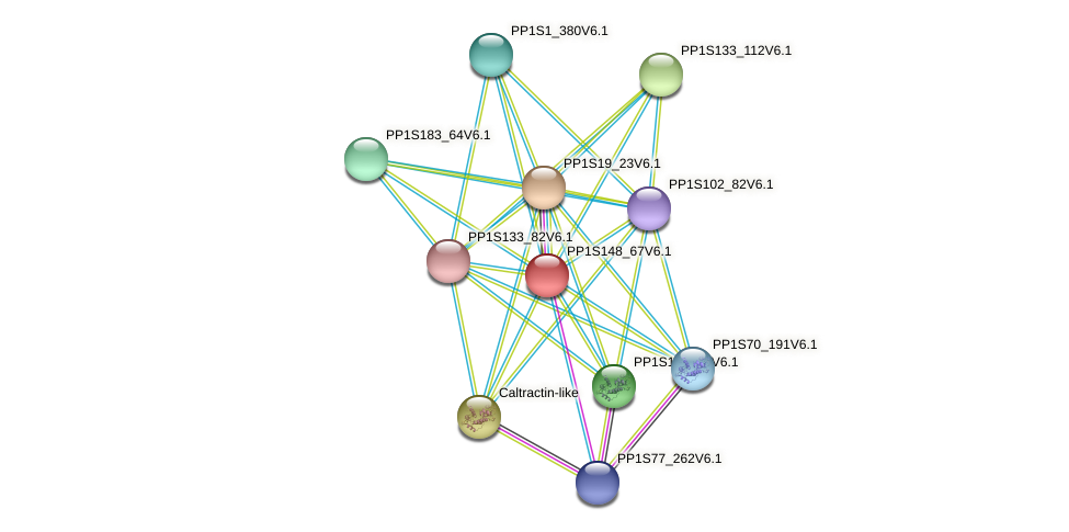 PP1S148_67V6.1 protein (Physcomitrella patens) - STRING interaction network