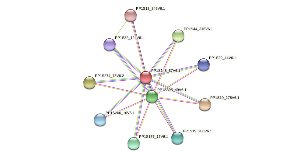 PP1S148_87V6.1 protein (Physcomitrella patens) - STRING interaction network
