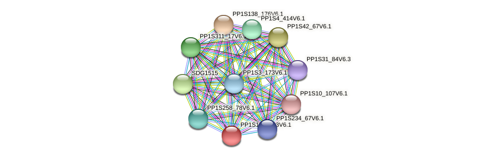 PP1S149_143V6.1 protein (Physcomitrella patens) - STRING interaction network