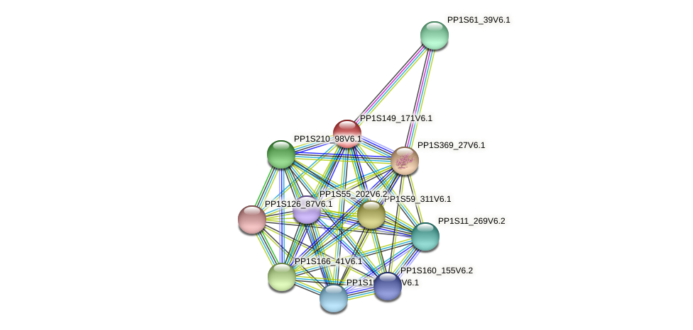 PP1S149_171V6.1 protein (Physcomitrella patens) - STRING interaction network