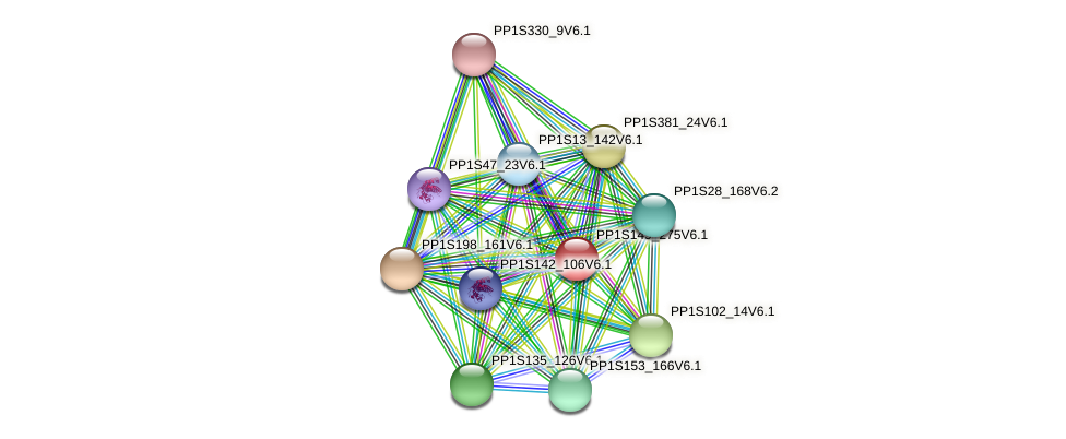 PP1S149_275V6.1 protein (Physcomitrella patens) - STRING interaction network