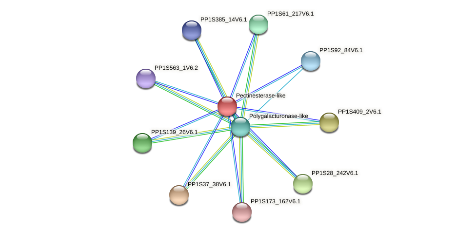 PP1S149_288V6.1 protein (Physcomitrella patens) - STRING interaction network