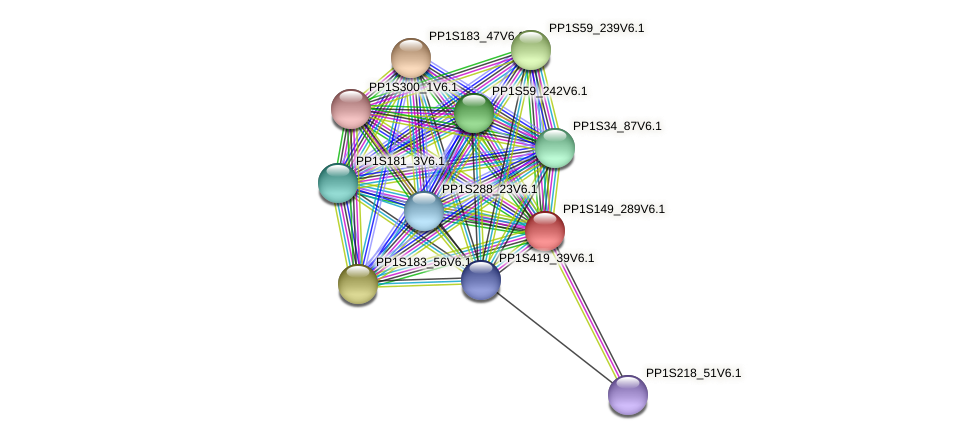 PP1S149_289V6.1 protein (Physcomitrella patens) - STRING interaction network