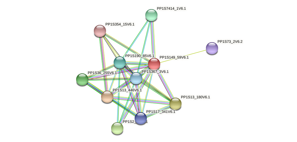 PP1S149_59V6.1 protein (Physcomitrella patens) - STRING interaction network