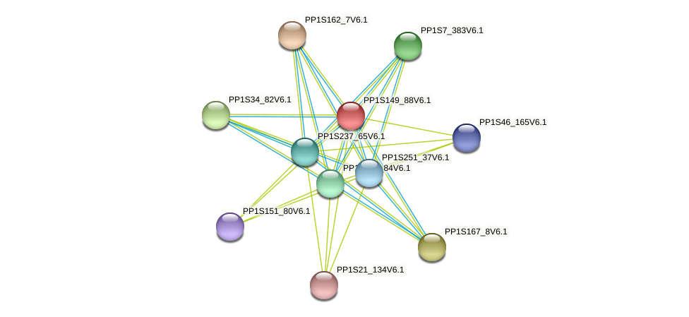 PP1S149_88V6.1 protein (Physcomitrella patens) - STRING interaction network
