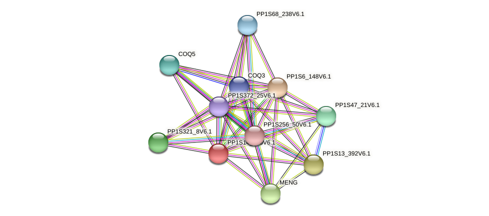 PP1S14_106V6.1 protein (Physcomitrella patens) - STRING interaction network