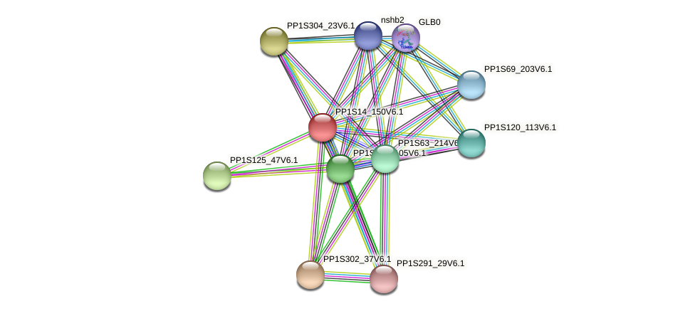 PP1S14_150V6.1 protein (Physcomitrella patens) - STRING interaction network