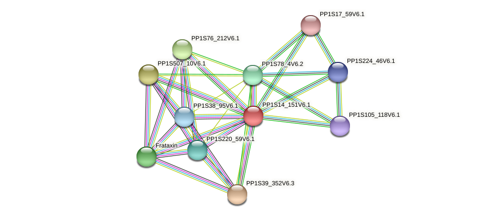 PP1S14_151V6.1 protein (Physcomitrella patens) - STRING interaction network