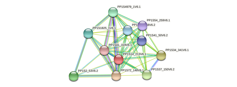 PP1S14_213V6.1 protein (Physcomitrella patens) - STRING interaction network