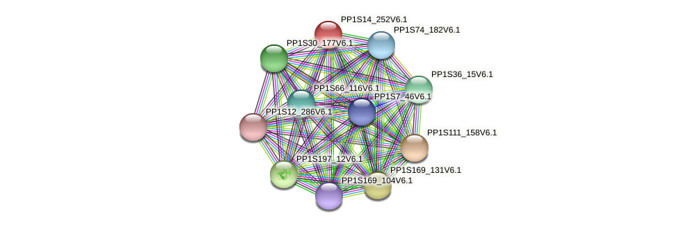 PP1S14_252V6.1 protein (Physcomitrella patens) - STRING interaction network