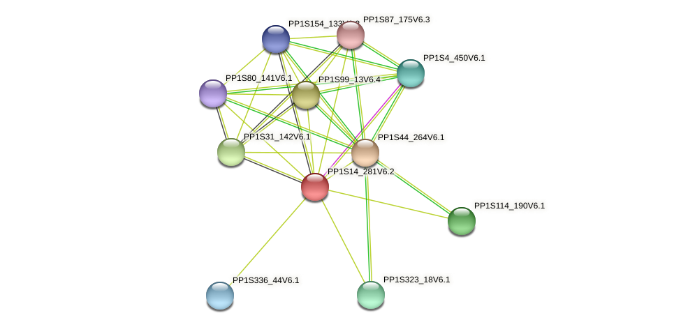 PP1S14_281V6.2 protein (Physcomitrella patens) - STRING interaction network