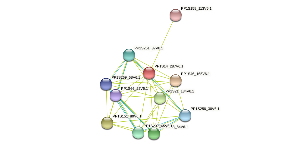 PP1S14_287V6.1 protein (Physcomitrella patens) - STRING interaction network