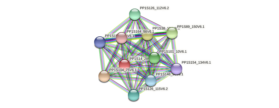 PP1S14_289V6.1 protein (Physcomitrella patens) - STRING interaction network