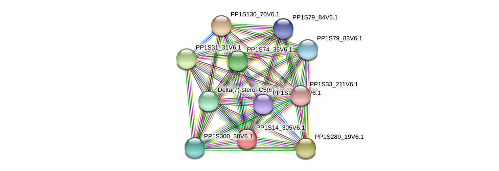 PP1S14_305V6.1 protein (Physcomitrella patens) - STRING interaction network