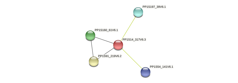 PP1S14_317V6.1 protein (Physcomitrella patens) - STRING interaction network