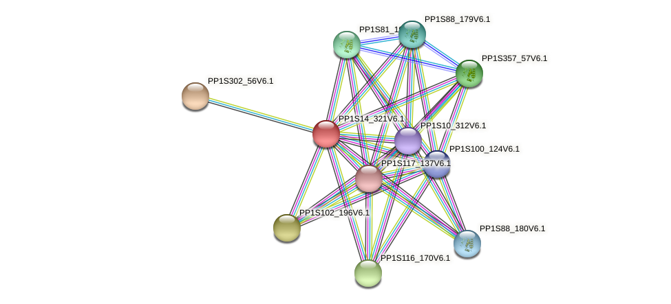 PP1S14_321V6.1 protein (Physcomitrella patens) - STRING interaction network