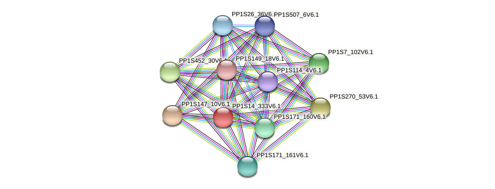 PP1S14_333V6.1 protein (Physcomitrella patens) - STRING interaction network