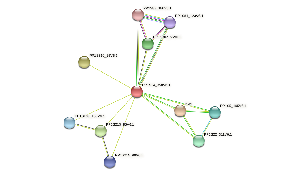 PP1S14_358V6.1 protein (Physcomitrella patens) - STRING interaction network