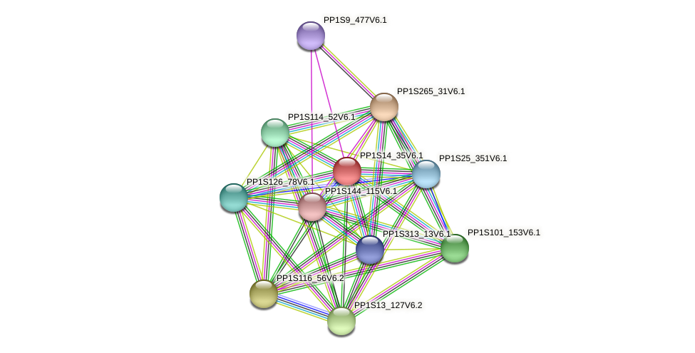 PP1S14_35V6.1 protein (Physcomitrella patens) - STRING interaction network