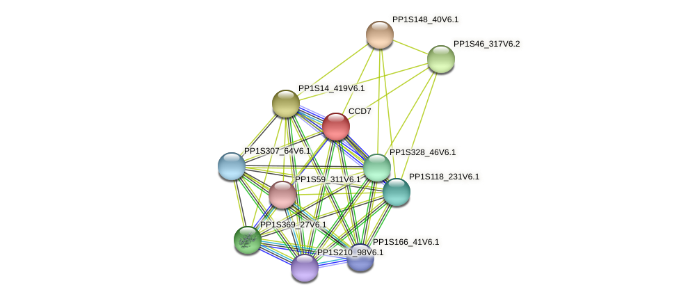 PP1S14_421V6.1 protein (Physcomitrella patens) - STRING interaction network