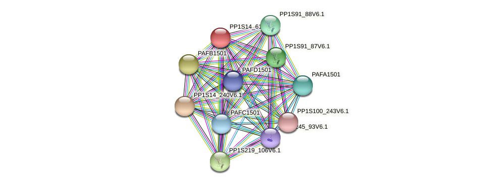 PP1S14_61V6.1 protein (Physcomitrella patens) - STRING interaction network